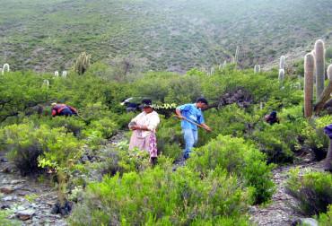 Bolivia-Ecotecnologico