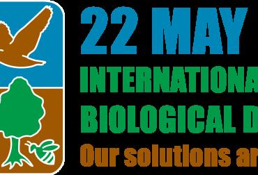 idb-2020-logo-en